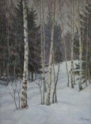 Winter im Birkenwald.