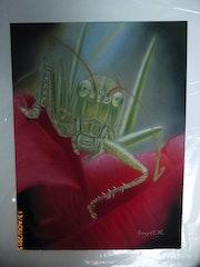 La grande sauterelle (pas le film l'insecte… ).