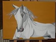 Pegasus. Mireille Vast