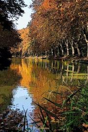 Automne sur le Canal du Midi -France.