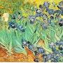 Irises. Vincent Van Gogh
