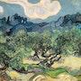 Oliviers avec les Alpilles à l'arrière-plan. Vincent Van Gogh