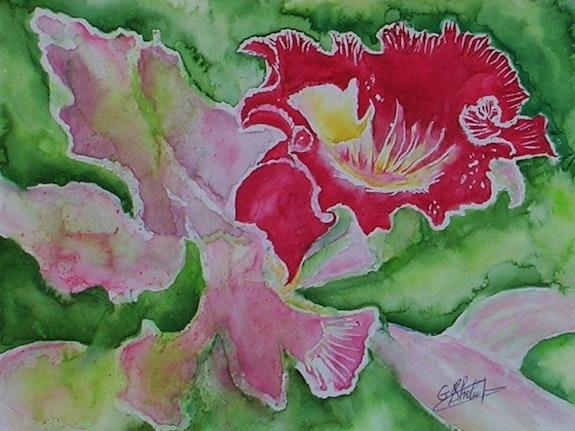 L'orchidée 1. Ghislaine Phelut-Sanchez Ghislaine Phelut