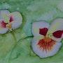 Divine orchidée. Ghislaine Phelut