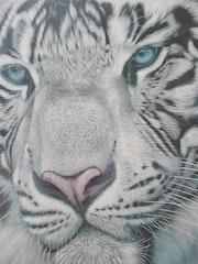 Tigre blanc d'apre une photos prise de moi meme.