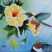 Hibiscus et Colibris. Marie Colin
