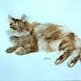 Chichi le chat de Fabrice. Yokozaza