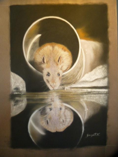 Ratatouille et son reflet…. Michel Gouyet Michel. Gouyet