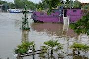 Paris sous la pluie….