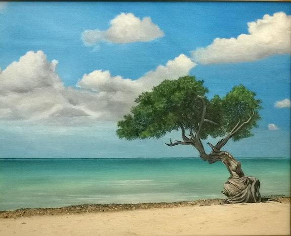 Les Caraibes. Carine Gionco Carine Gionco - Swamberghe