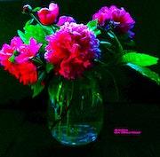 Bouquet de pivoines. Anita De Martini