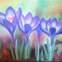 Crocus au printemps. Nicole Retureau