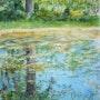Reflets dans la mare. Althéia - Martine Vinsot