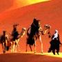 Traversée du désert. Marie Carteron