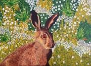 Hare on spring flowers. Jorge Kreye