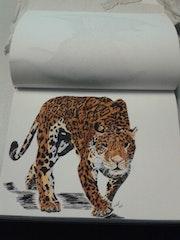 Tigre. Mireille Vast