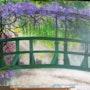 Pont japonais. Salsera