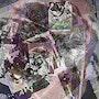 Japanesemountain. Annesof296478
