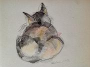 Meine Katze Bruni. Manuela Hinkeldey