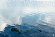 Berck sur Mer - Relaxation 1. Lionel Thieffine