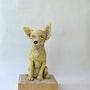 Chihuahua. Barake Sculptor