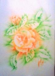 Rose / 21 X 29.7 / pastel gras repoussé. Mariraff