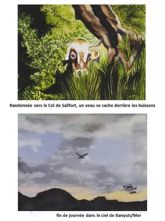 Cartes Postales 3. Michèle Truchot Mimi