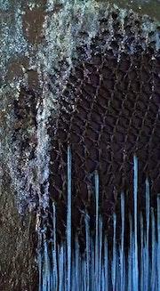 Blue thread detail.