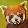 Panda roux. Josi