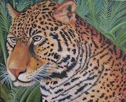 Jaguar. Atiliobrasil