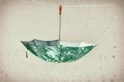 Umbrella. Marleen Brauers
