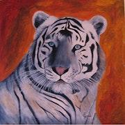Tigre blanc Huile sur toile.