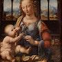 La Madone à l'œillet. Leonardo Da Vinci