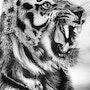 El tigre. Yuritoon