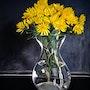 Chrysanthèmes. Catherine Wernette