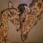 Girafe girafon. Callisto