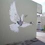 Colombe de la paix. Banksy