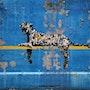 Leopard graffiti. Banksy