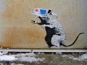 3D rat.