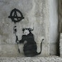 Rat Anarchist. Banksy