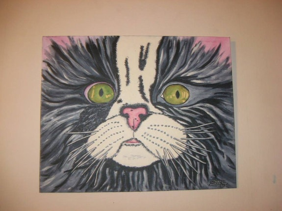 Tête de chat. Zabée Mc Zabée Mc