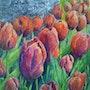 Tulipes rouges ou renouveau du printemps. Brigitte Grenesche