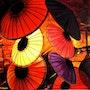Les ombrelles. Bernard Sannier