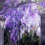 La porte du paradis.