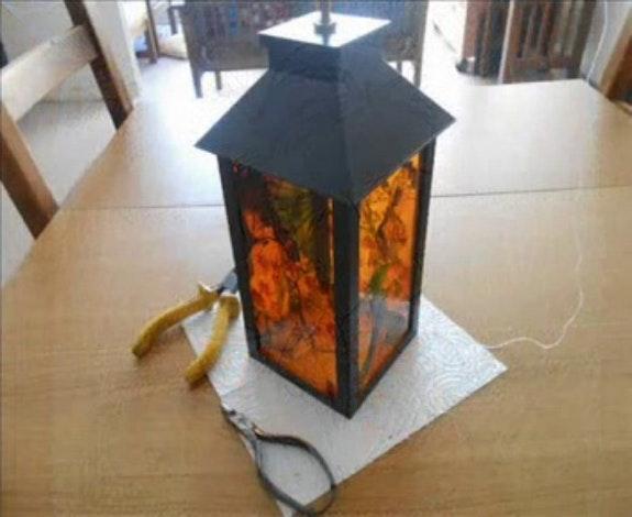 Ma «lanterne» magique. Jacquesvm Jacky