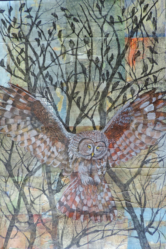 Owl Flying Amongst the Sparrows.  Sabrina Squires