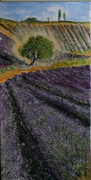 Lavendelbaum 70/40 250. -.