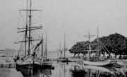 Le port de Vannes en 1900. Gérard Baty