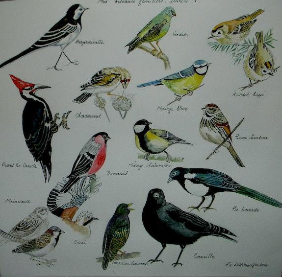 Une envie d'ailes Planche 1 Mes oiseaux familiers. Françoise-Elisabeth Lallemand Françoise-Elisabeth Lallemand