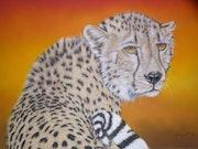 Le guépard dans la savane par une journée trés chaude.. Michel. Gouyet